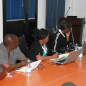 Denis Ouedraogo, Adetola Adeoti, Nancy Mwange and Clara Delavallade